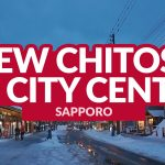 NEW CHITOSE AIRPORT TO SAPPORO CITY CENTER