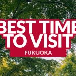 BEST TIME TO VISIT FUKUOKA